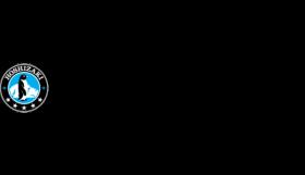 Logo-Hoshizaki